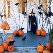 Halloween! Ha szereted a borzongást, ez az ünnep a kedvenced lesz