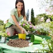 Kertészkedjünk, már itt a várvavárt tavasz a hétvégén!