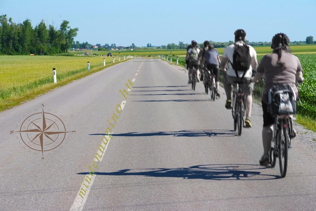 bicikli_A10_2013