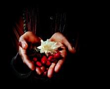 Ethiópia fekete zamata egy csésze kávéba rejtve