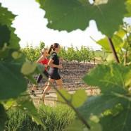 Burgenland nemcsak zöld, de sportos is