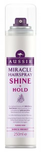 Shine&Hold_250ml_HairSpray