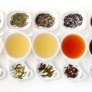 Ősszel egy csésze teával lazíts